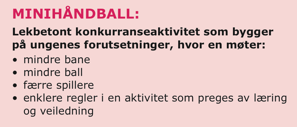 Bilderesultat for minihåndball