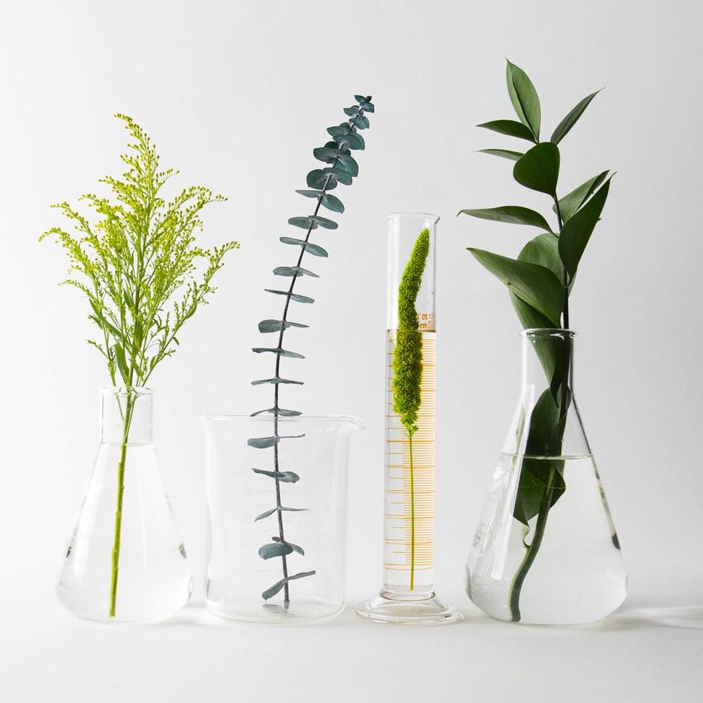 Redken Nature + Sciense