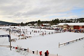 Bilderesultater for tolga ski