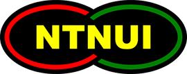 Bilderesultat for NTNUI bandy
