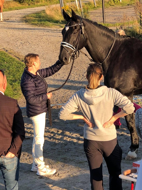 Et bilde som inneholder utendørs, person, hest, gressAutomatisk generert beskrivelse
