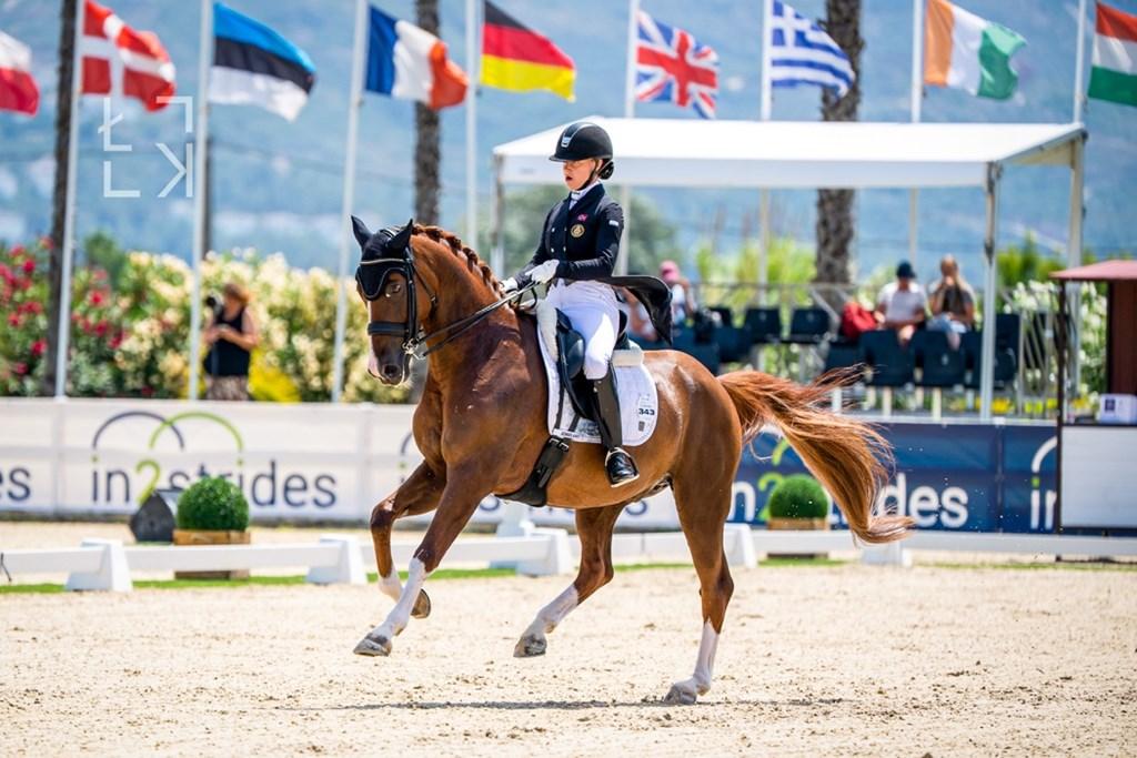 Et bilde som inneholder bakke, hest, utendørs, ridningAutomatisk generert beskrivelse