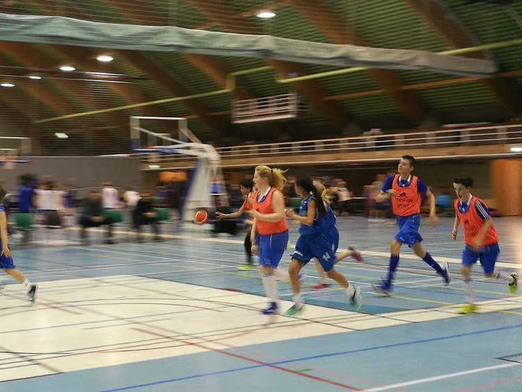 basket2017-2.jpeg