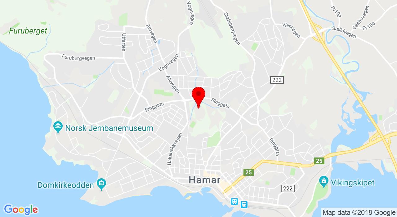 Ankerskogen skytebane,  Hamar