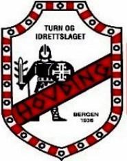 Logo Hovding