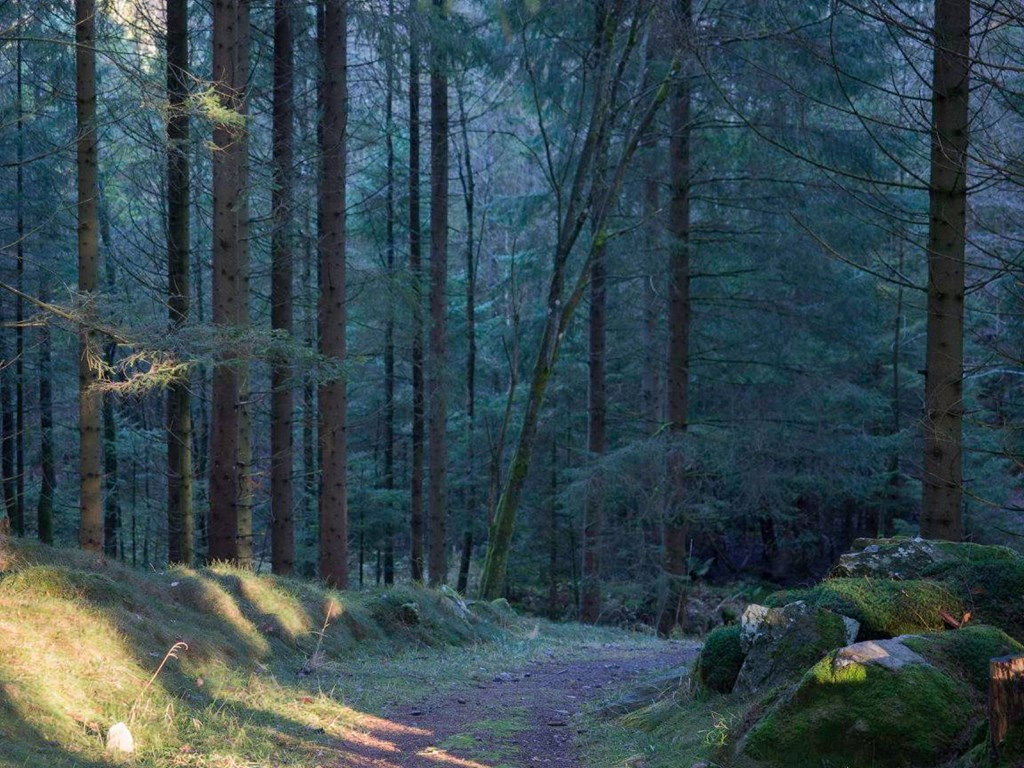 Sätila Trail sitt bilde.