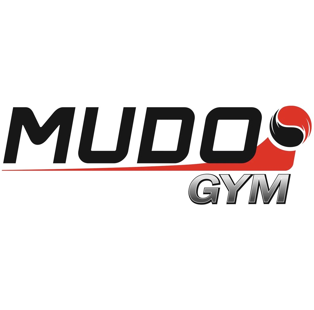 Bilderesultat for mudo logo
